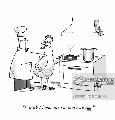 animals-egg-chicken-hen-hen_house-poultry_farm-rbdn128_low.jpg